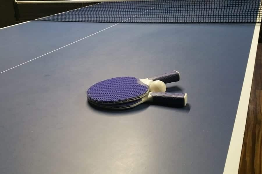 10 Best Ping Pong Paddles For Beginners (2020 Update)