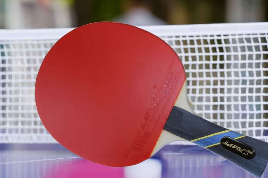 MAPOL 4 Star Professional Ping Pong Paddle Review
