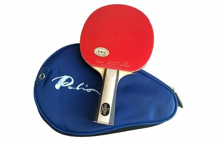 Palio Expert 2.0 Table Tennis Racket & Case
