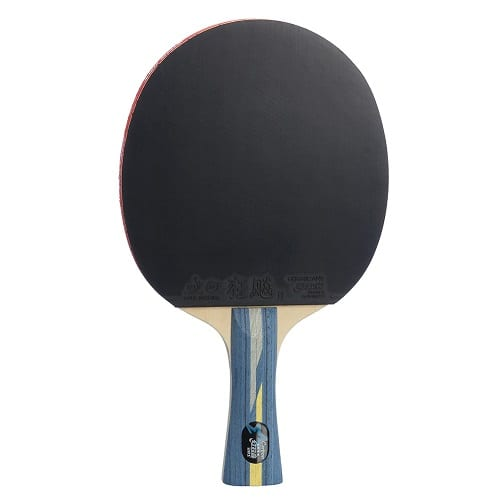 DHS Table Tennis Racket 4002C Ping Pong Paddle