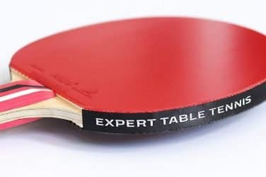 Palio Master 3 Table Tennis Racket Review