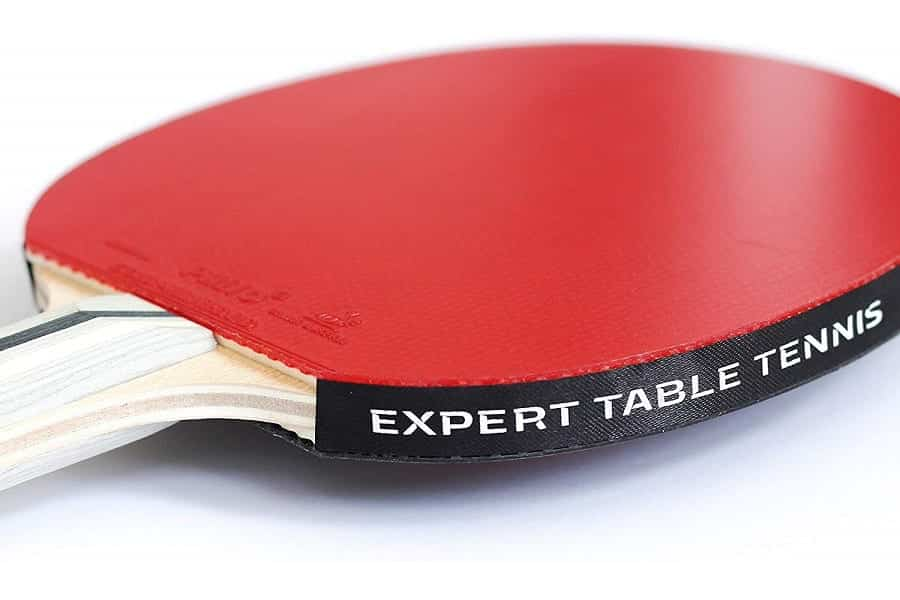 Palio Expert 3 Table Tennis Racket Review