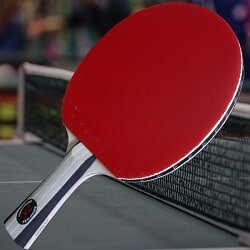 10 Best Table Tennis Bat For Intermediate Player Of 2021 1